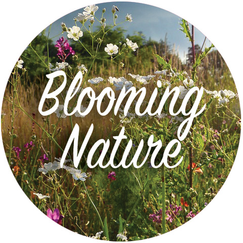 Blooming Nature