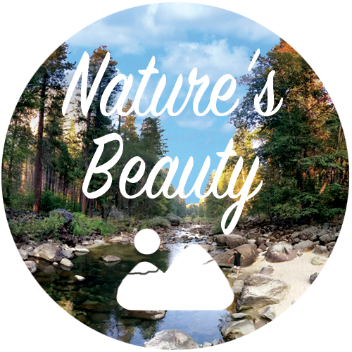 Nature's Beauty Playlist